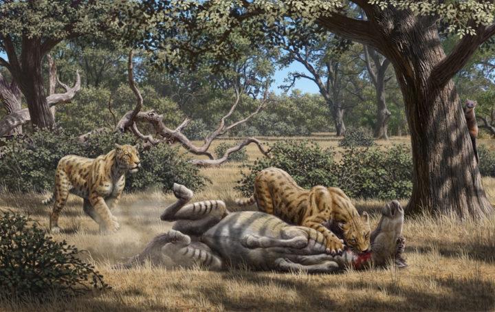 sabretooth killing