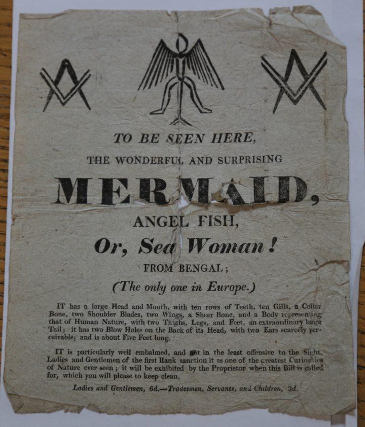 Mermaid advert