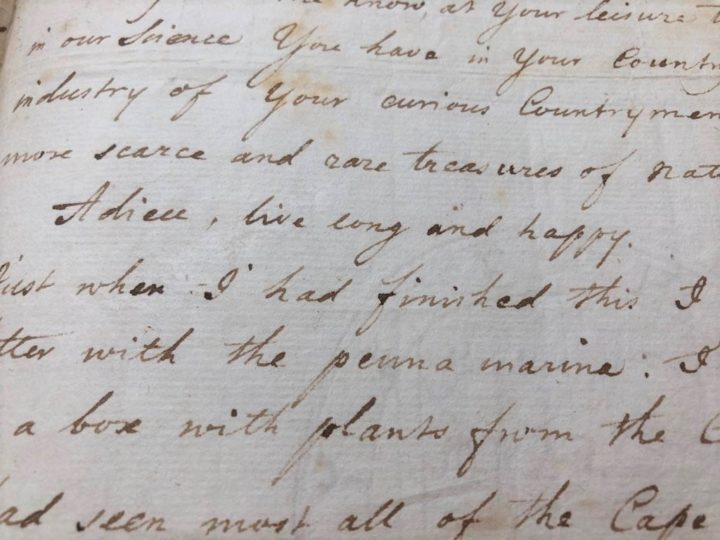 """""""Adieu, live long and happy"""": Carl Linnaeus' words to Peter Collinson in a translated letter (MS/323a/11-14)"""