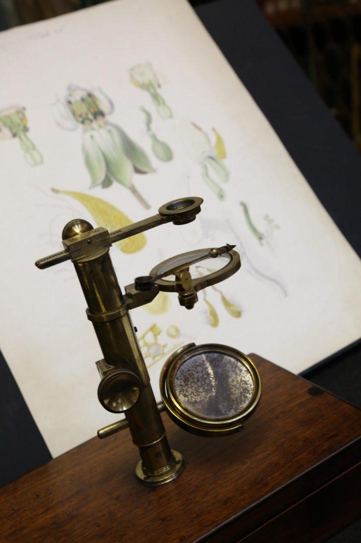 Brown microscope