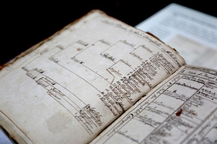Dichotomus diagrams_Carl Linnaeus (1727-1730)