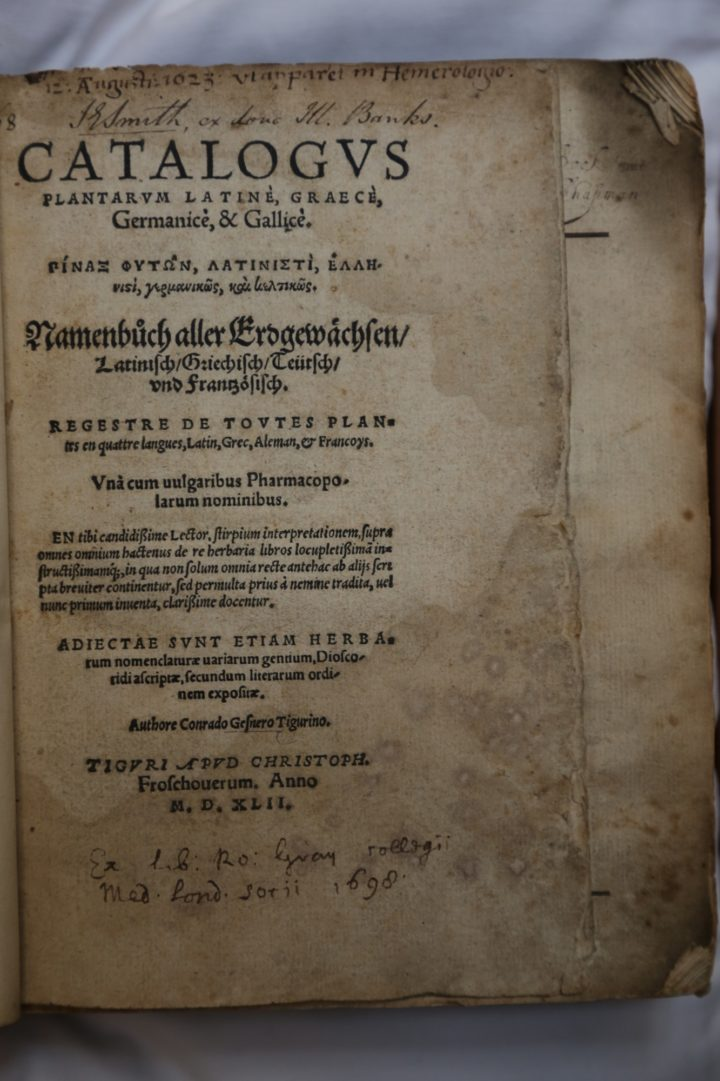 Title page of Gessner's Catalogus plantarum