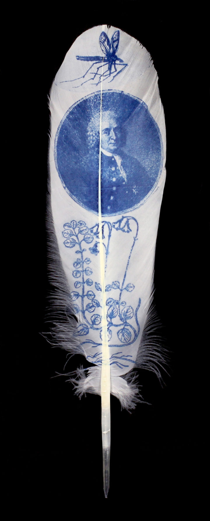 Hand-printed feather by Rebecca Jewell © Linnean Society