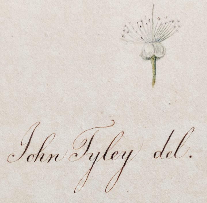 John Tyley Signature