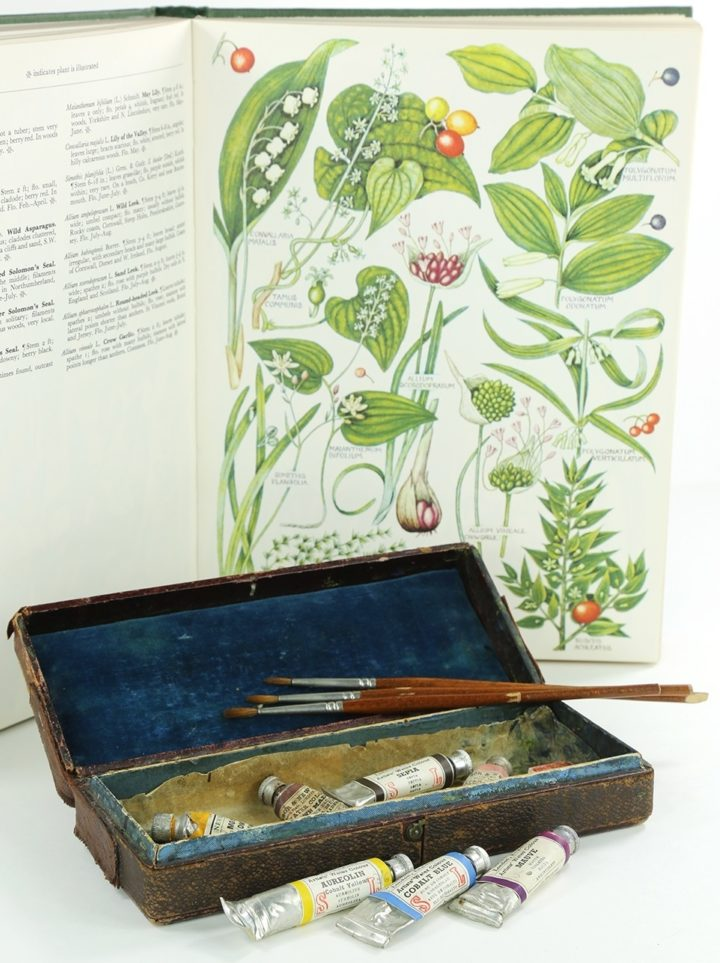 Keble Martin's paint box