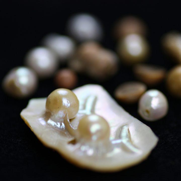 Linnaean pearls