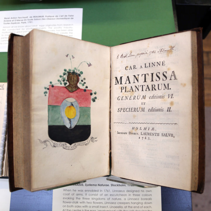 Linnaeus's Coat of Arms