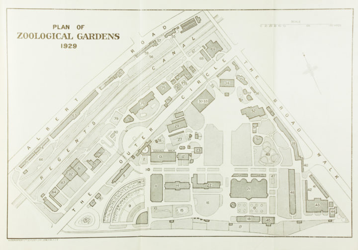 Plan of London Zoological Gardens