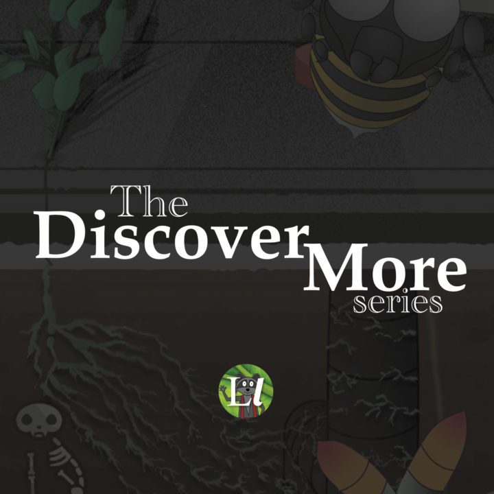 The Discover More Series