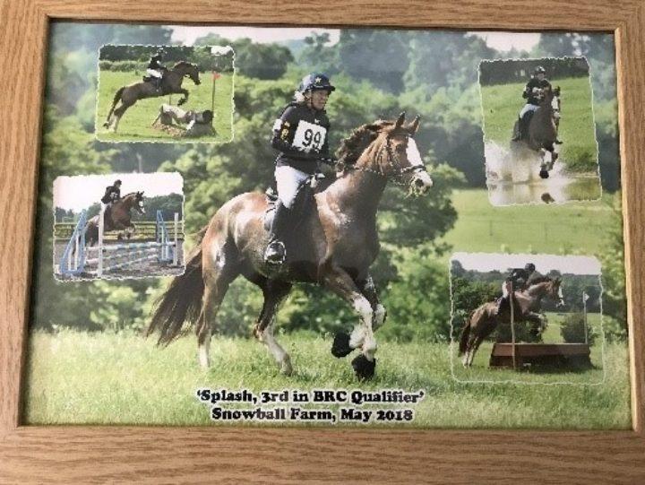 Elizabeth Horses