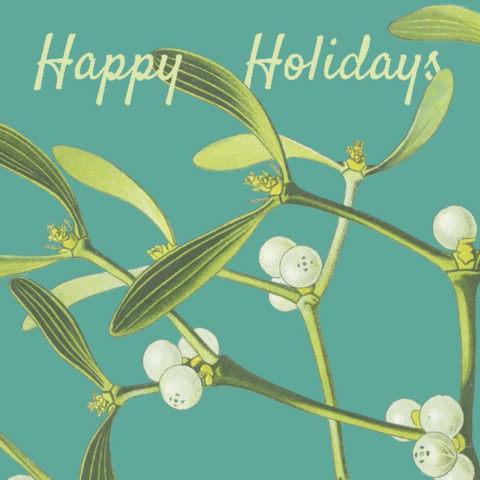 Mistletoe Card Web