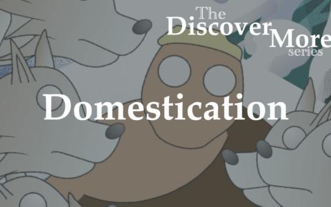 Discover More: Domestication