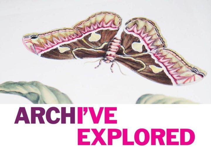 Explore your Archive logo