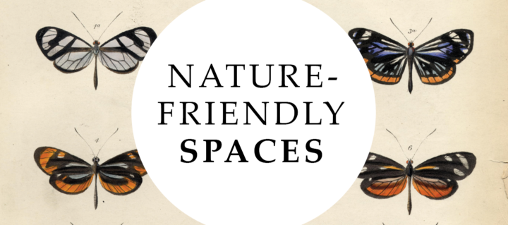 Nature Friendly Spaces