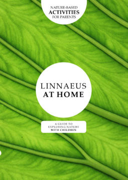 Linnaeus at Home: A guide to exploring nature with children