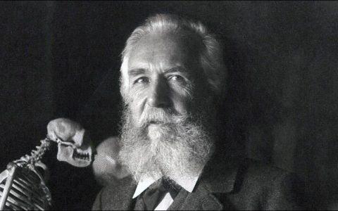 Ernst Haeckel (100 years)