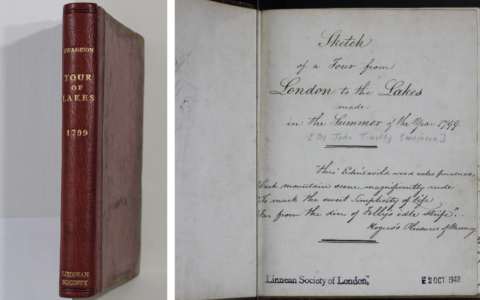 Treasure of the Month: John Timothy Swainson's Summer of 1799