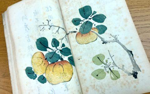 The Ten Bamboo Studio Treatise on Painting