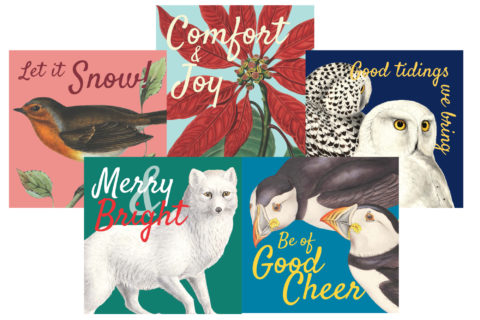 Christmas Card Pack - Merry and Bright