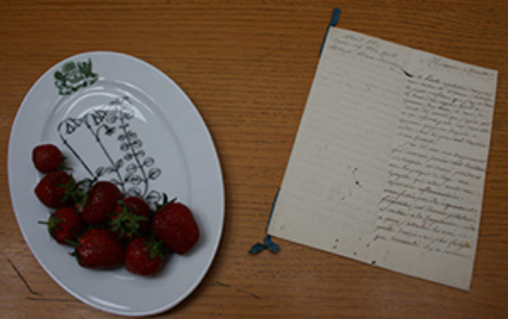 Linnaeus believed strawberries cured a painful attack of gout